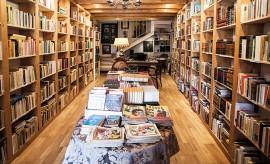 La bodega literaria, especializada en libros antiguos, raros, usados y descatalogados. Cultura