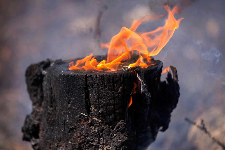 Incendio de La Palma. FOTO: Reuters