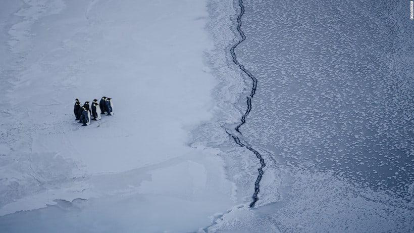"""""""Pinguinos frente a una grieta en el hielo cerca de la estación de McMurdo, en la Antártida."""" (© Kira Morris)"""