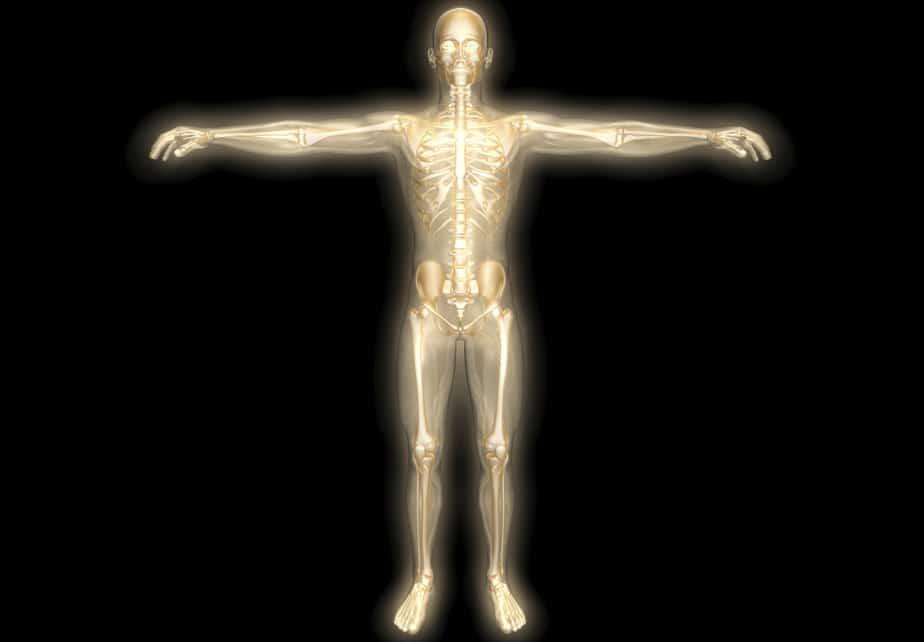Diez partes del cuerpo que son completamente inútiles