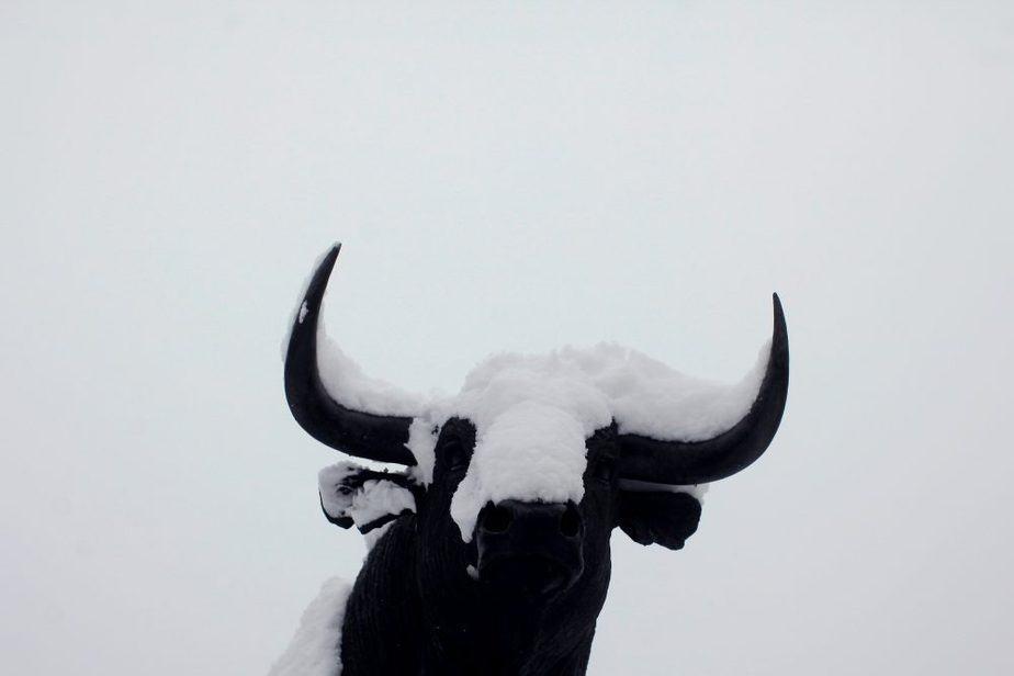 Temporal de nieve en España. FOTO: Reuters