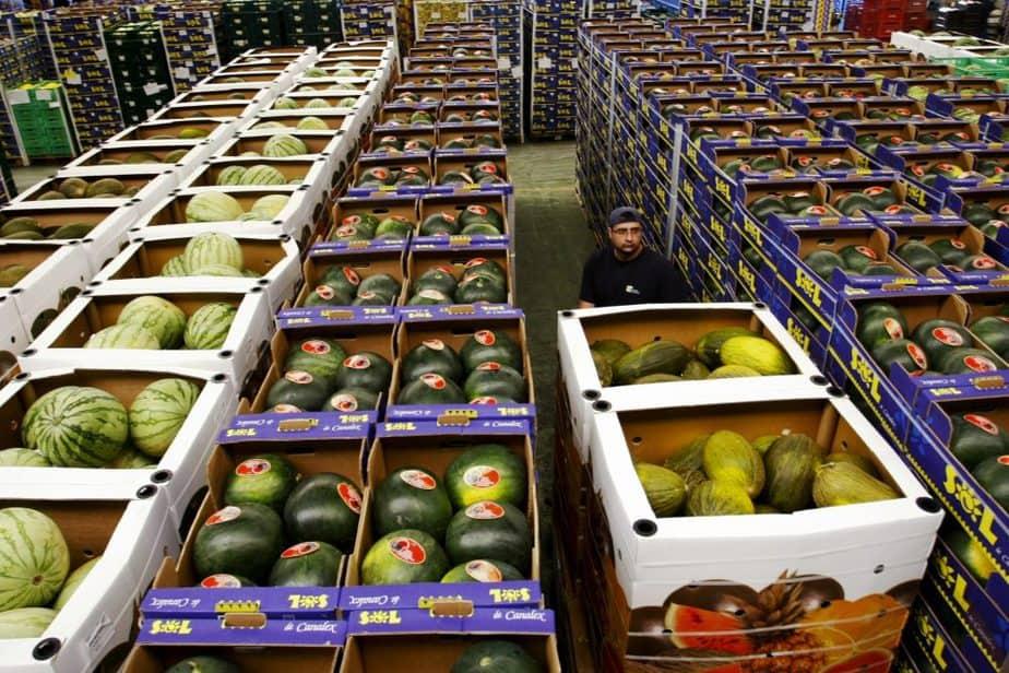 Un trabajador arrastra cajas de fruta en El Ejido, Almería. FOTO: Reuters