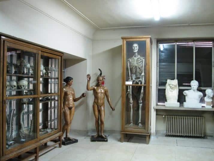 Museo Javier Puerta