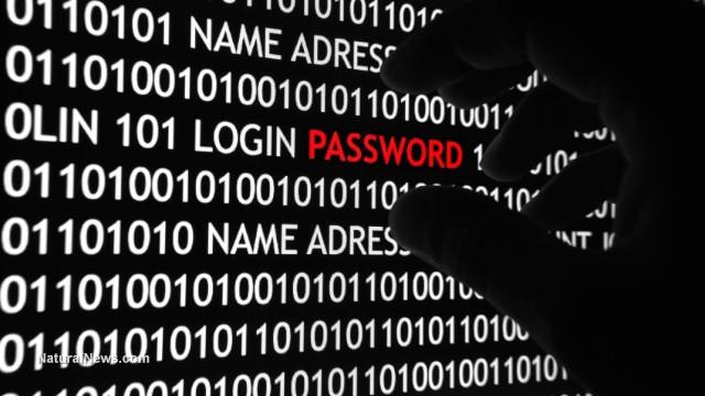 España capturó al mayor ladrón cibernético de bancos del mundo