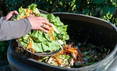 La UE firma una ley en contra de los desperdicios de alimentos