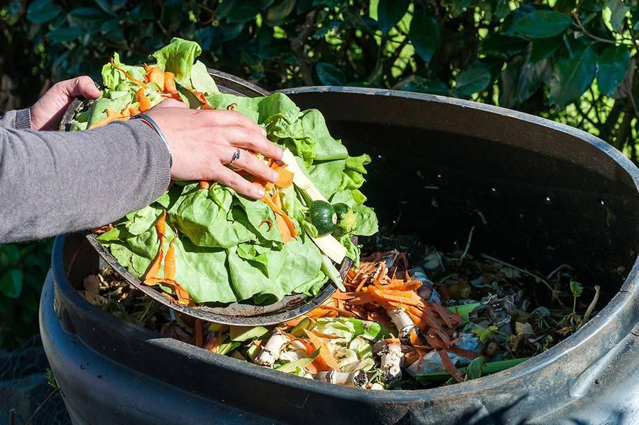 Resultado de imagen para Desperdicio de alimentos