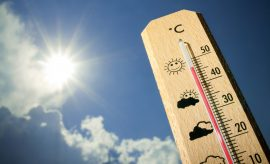 Una ola de calor mundial rompió los registros globales esta semana