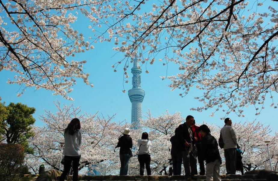 Un recorrido por el Tokio más cultural y monumental