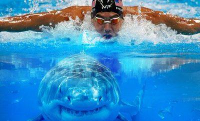 Cambiar un hábito y constuíír nuevos: la fórmula del éxito de Michael Phelps