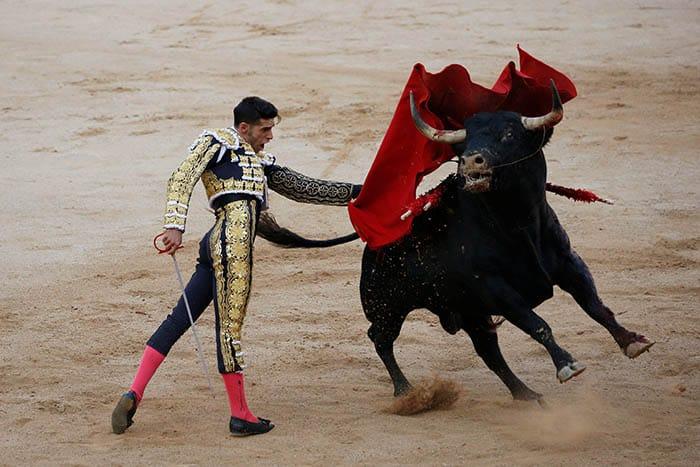 """La ley de """"toros a la balear"""", o ley contra el maltrato a los animales de Baleares, prohibe matar a los toros en las corridas"""