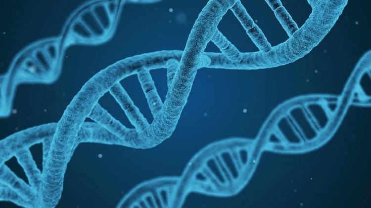 Desastres futuros en el mundo: La manipulación genética sale mal