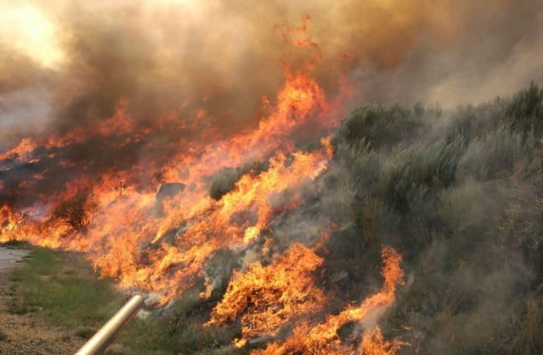 Incendio en el Parque de Gredos.