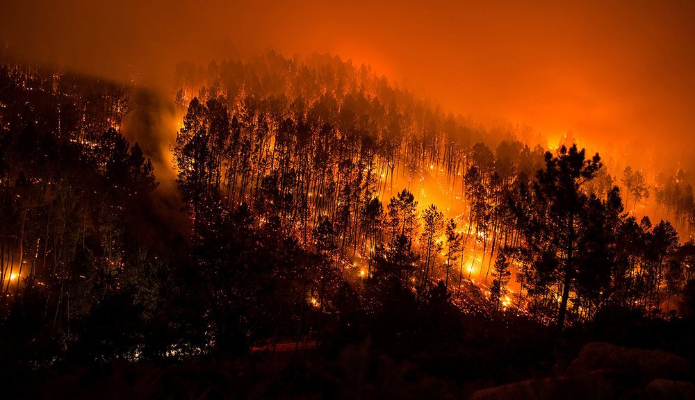 Galicia azotada por las llamas.
