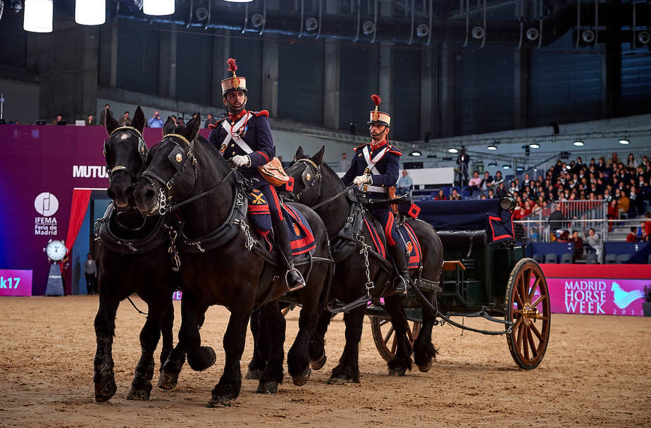 MADRID, SPAIN - NOVEMBER 23: Madrid Horse Week 2017 at IFEMA on November 23, 2017 in Madrid, Spain. (Photo by Manuel Queimadelos / Oxer Sport)