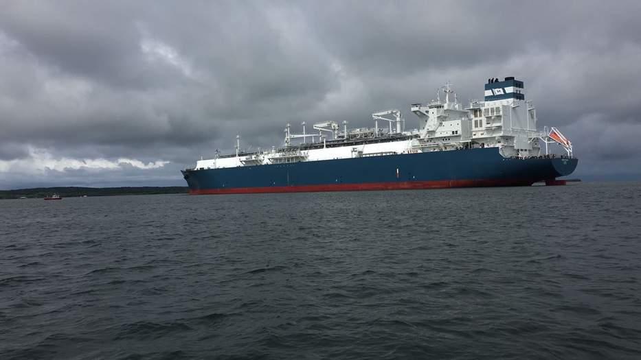 Japón y China mayores importadores en el mundo