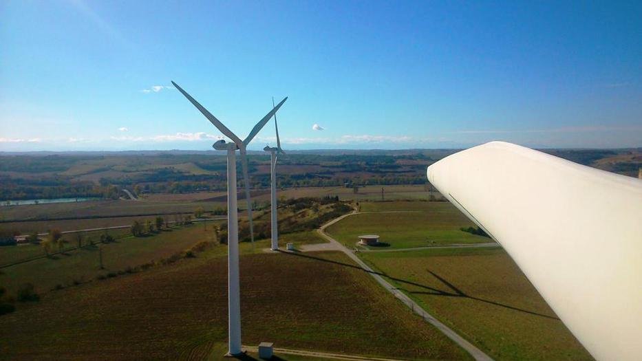 Cinco parques eólicos garantizados