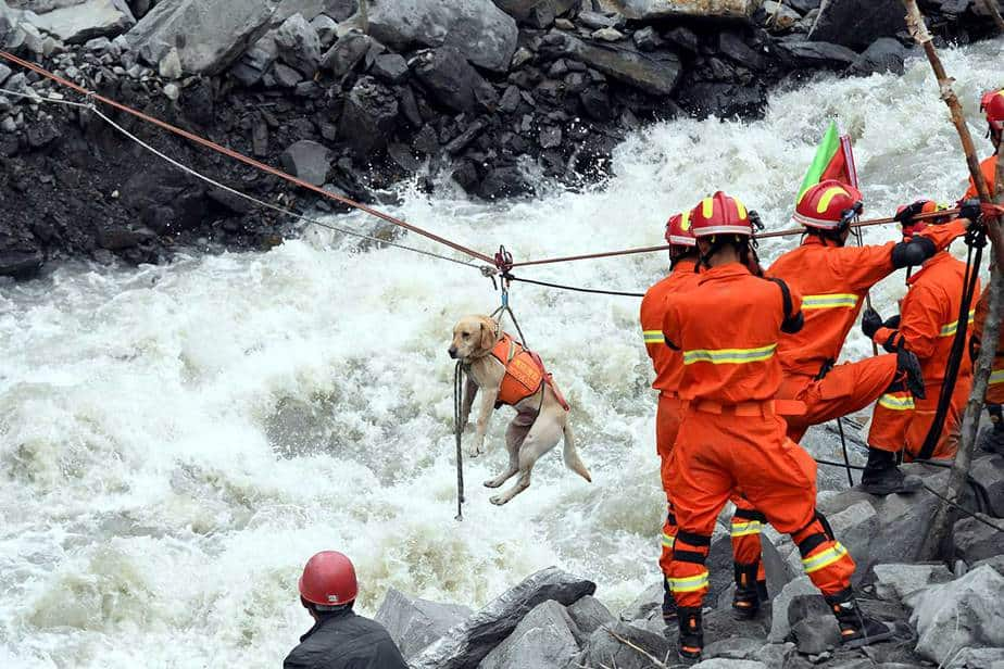Los trabajadores de rescate tiran de un perro de rescate a través de un río en el sitio de un deslizamiento de tierra en la aldea de Xinmo, condado de Mao, provincia de Sichuan, China, el 25 de junio de 2017. CNS / An Yuan vía REUTERS