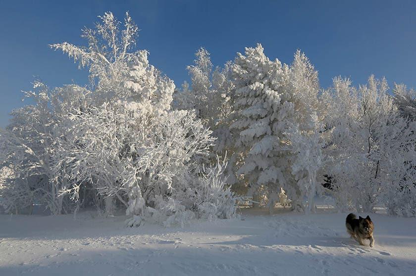 El regreso del invierno mantiene en alerta a 38 provincias.