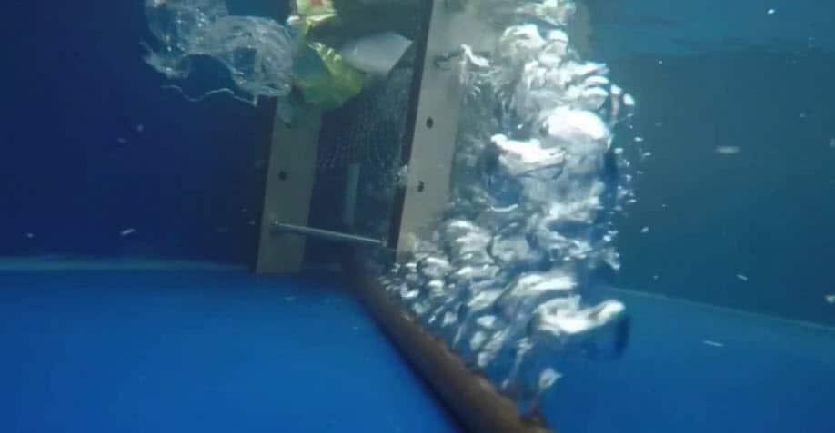 Gran Barrera De Burbujas Una Solución A La Contaminación Plástica
