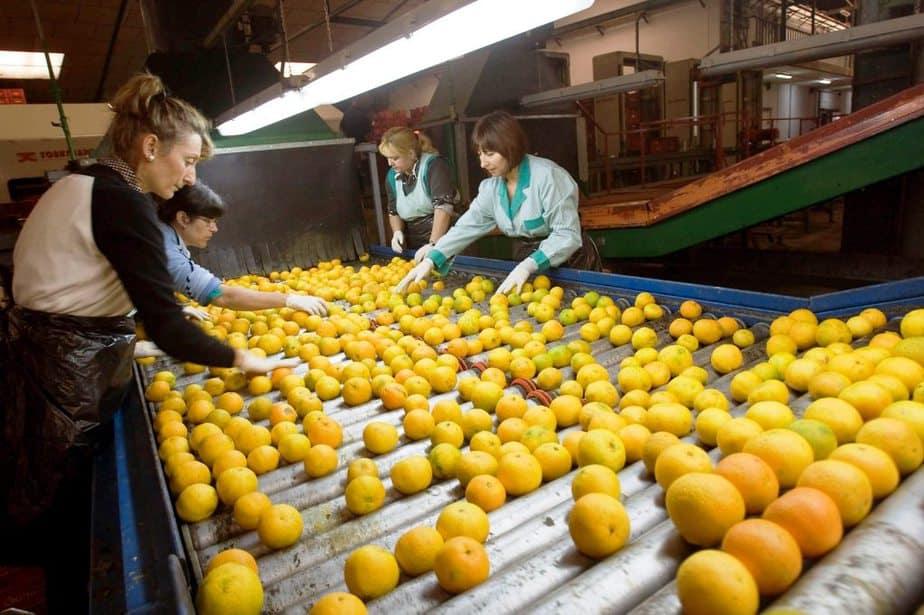 Energías limpias para las cooperativas agrícolas de la UE
