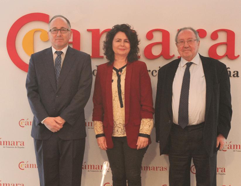 Presidente de Iberia. Luis Gallego, al frente de la Comisión de Turismo de la Cámara de España