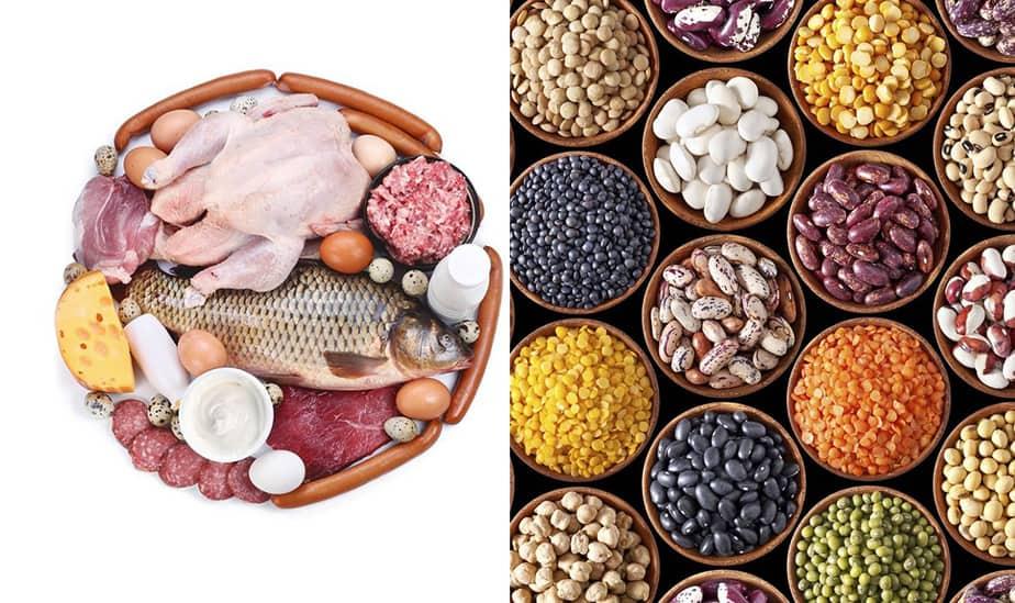 El consumo de proteínas: realidades sobre su papel en la alimentación