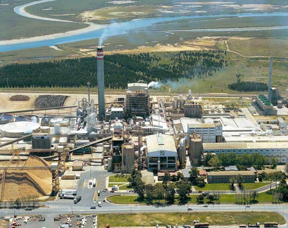 La Planta de energía con Biomasa estará lista el próximo año