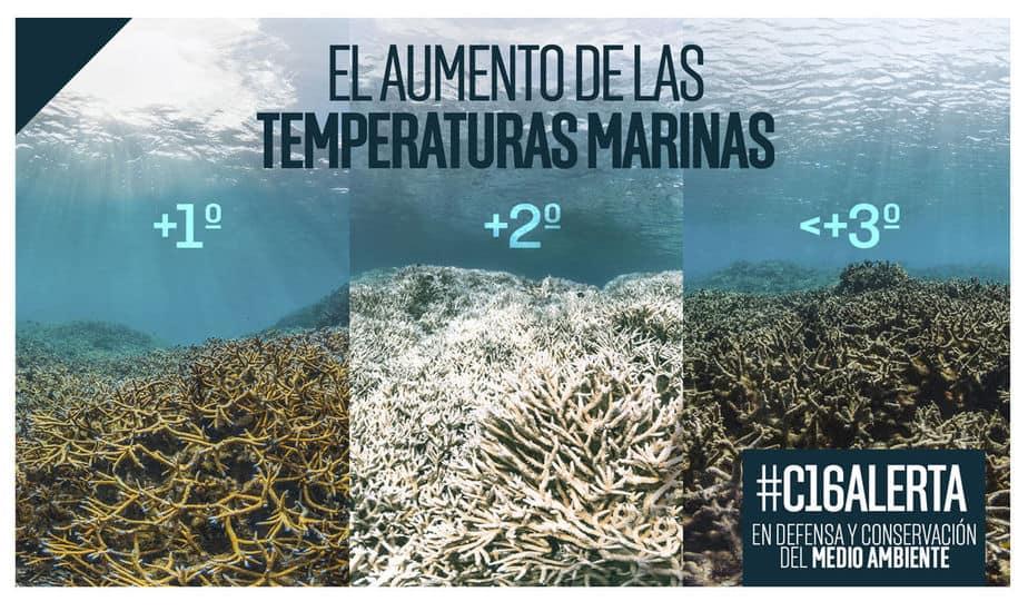#C16Alerta: noticias de medio ambiente: aumento de la temperatura marina