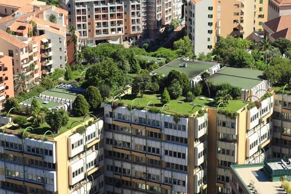 Medio Ambiente DKV: Hogares sostenibles, ciudades sanas
