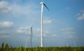 Acciona activa parque eólico asociado a la Reforma Energética mexicana