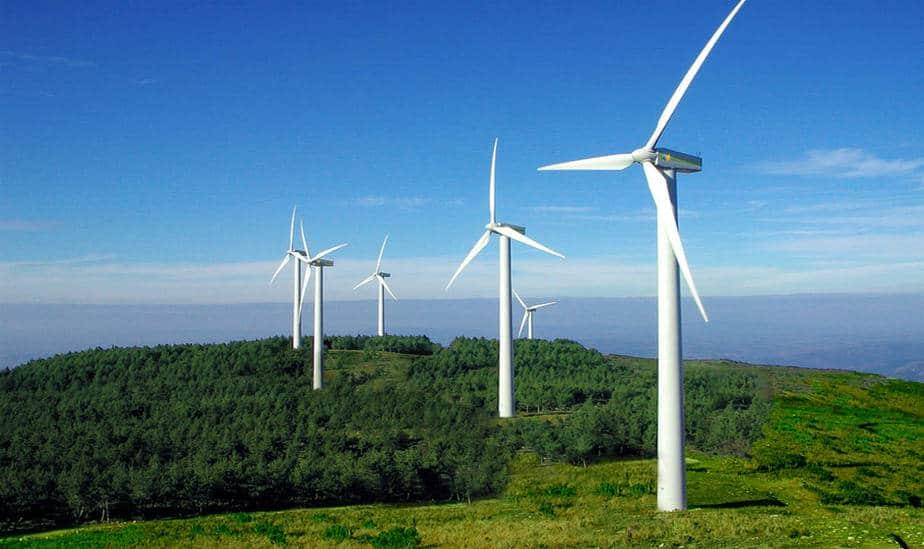 Secretario de Energía español promete marco regulatorio para el sector eólico
