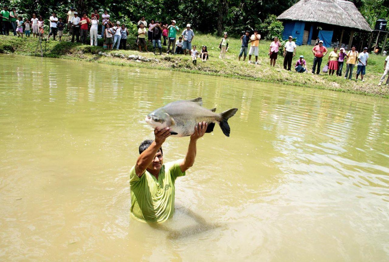 """El consumo mundial de pescado """"es insostenible"""", advierte la ONU"""
