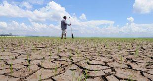 ONU Cambio Climático muestra con éxito recuperación de ecosistemas