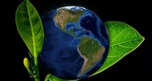 Una acción climática contundente puede generar USD26 billones hasta 2030