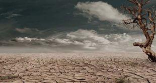 La sequía ha desplazado a más afganos que el conflicto, dice la ONU