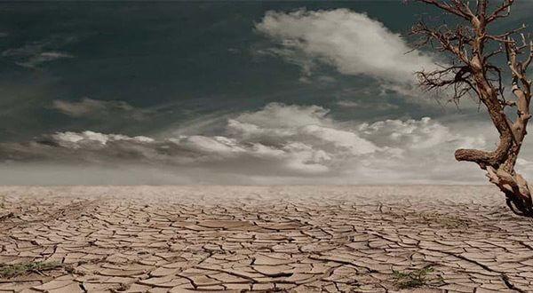 La sequía ha desplazado a más afganos que el conflicto, dicen las Naciones Unidas