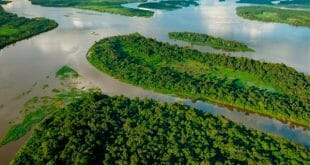 El grupo español ACS y la china Three Gorges Corporation lideran los dos conglomerados que participarán en el proyecto hidroeléctrico