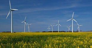 Microsoft suma 1.200 MW renovables a su portafolio y refuerza sus compromisos como miembro de la iniciativa RE100