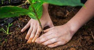 La campaña #Climattitud inicia con un cuestionario que evalúa la postura climática de los internautas
