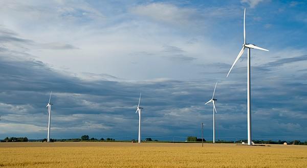 El avance de energías limpias debe tomar en cuenta la protección de la biodiversidad