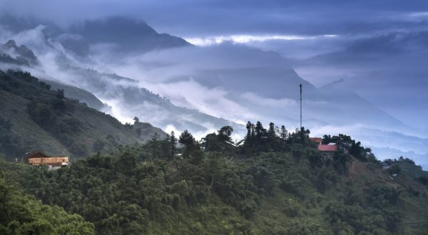 """La NASA asegura que el mundo es """"más verde"""" que hace 20 años gracias a China e India"""