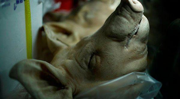 En Corea del Sur combaten la contaminación con grasa de cerdo