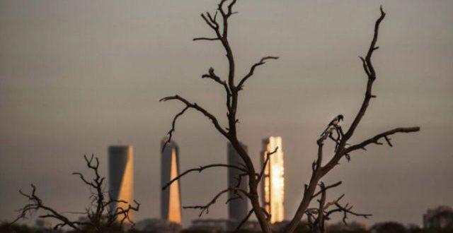 El tema ambiental es un desafío para las nuevas autoridades en España