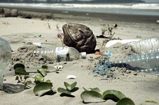 mitos sobre el reciclaje