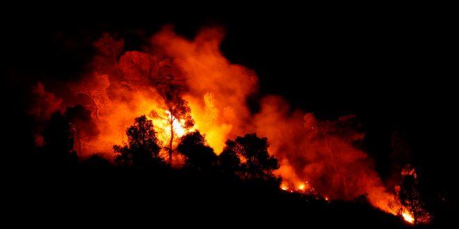 El fuego ya ha arrasado más de 55.000 hectáreas en nuestro país