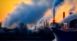 La humanidad debe ayudar a regenerar los recursos de la Tierra, combatiendo el calentamiento global
