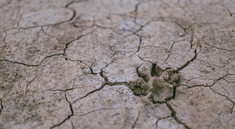 Degradación-del-suelo-