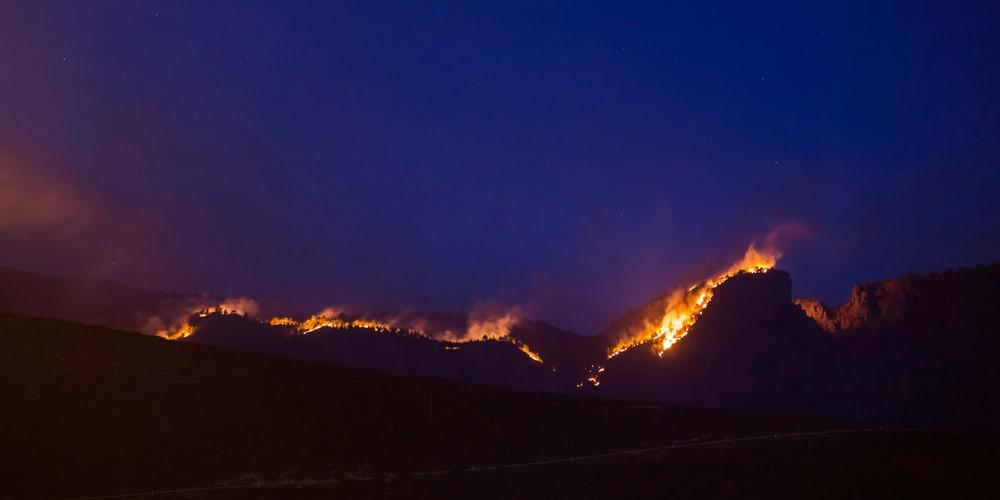 Autoridades lucharon durante la madrugada contra las llamas.