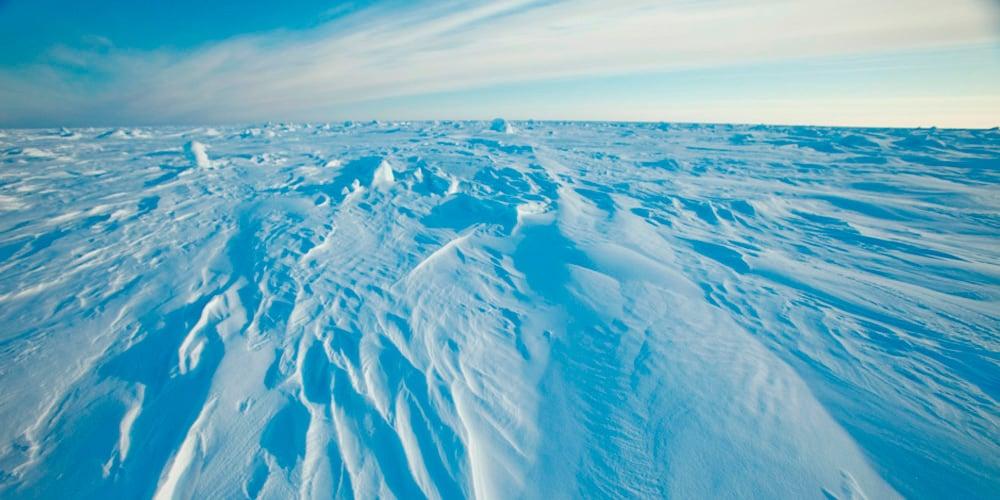 Es preocupante el deshielo que sufre la inóspita región ártica.