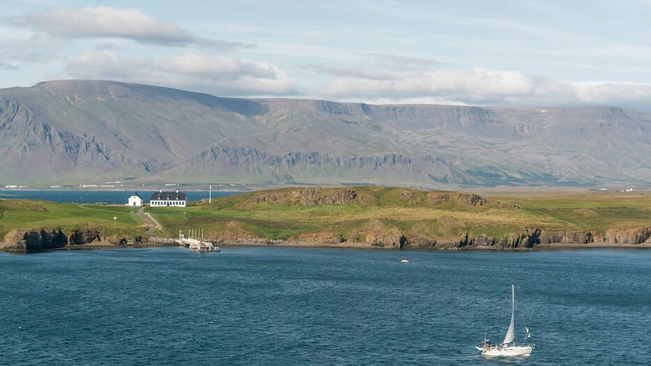 Islandia es el país con menos bosques